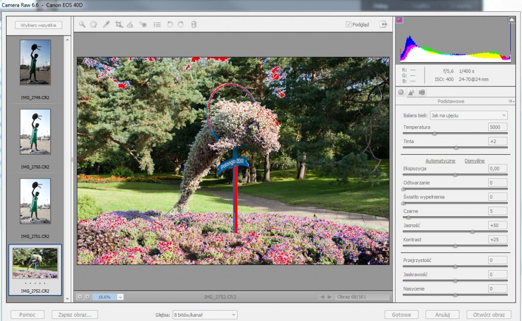 Camera RAW 6.6 w Adobe Photoshop Elements 10
