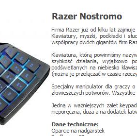 Fragment strony serwisu razershop.pl, z której skradziono treści